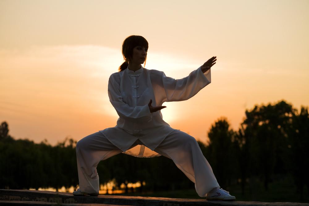 Allgemeines über Wushu